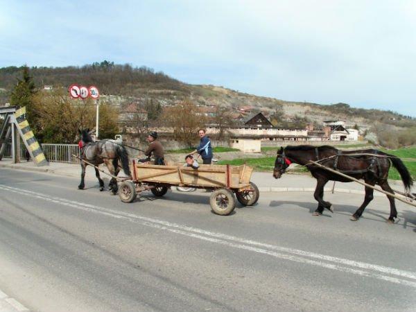 koňský povoz